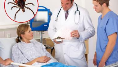 Доц. Димитър Вучев: Лаймската болест е лечима, но от специалист