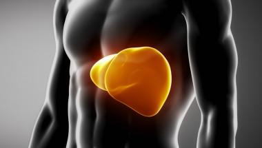 Хепатит В предизвиква чернодробна инфекция