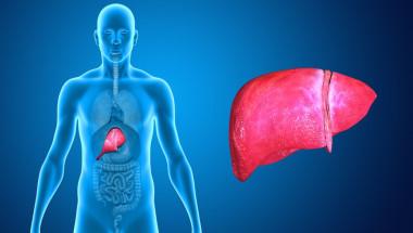 Вирусният хепатит причинява цироза