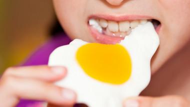 Учени огласиха тайно лечебно свойство на яйцата
