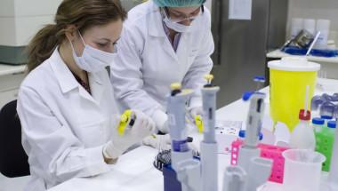 Нашите стволови клетки възстановяват увредените ни органи!