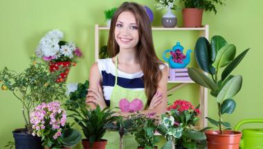 Има ли стайни цветя, които разболяват?