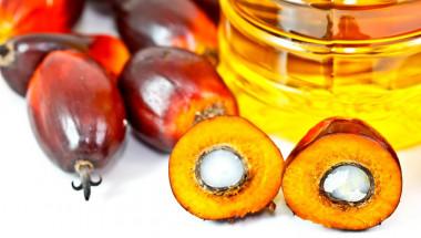 Опасните храни с палмово масло
