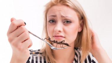 Ядете насекоми и отслабвате