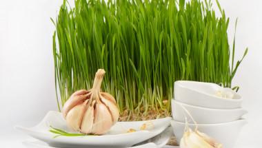 Лек с пшеница и чесън дава здраве и дълголетие
