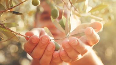 Чудодеен еликсир от Библията лекува пневмония и грип