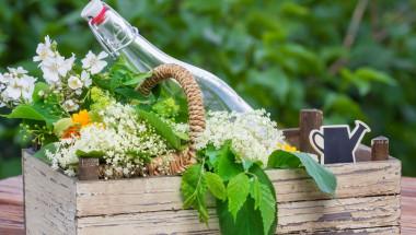 Билкова ракия помага при болен стомах и аритмия