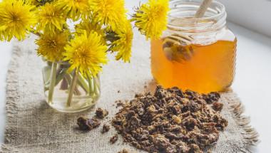 Прополисът - пчелният антибиотик