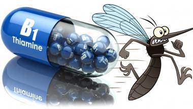 Витамин В1 –   враг  номер 1 на комарите