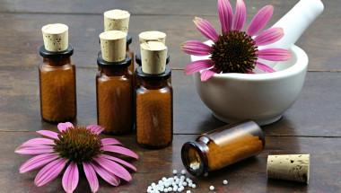 Чудните свойства на билката ехинацея, която помага от простуда до проблеми с кожата