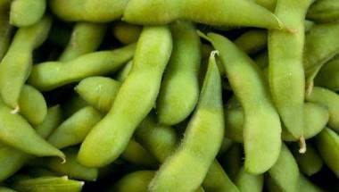 Преборете диабета със сок от зелен фасул
