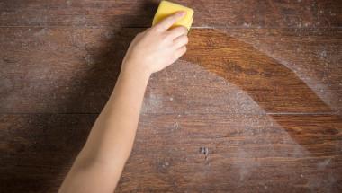 Д-р Евгений Черемушкин: Домашният прах провокира развитието на рак