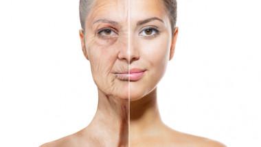 US-експерти разкриха как да забавим стареенето