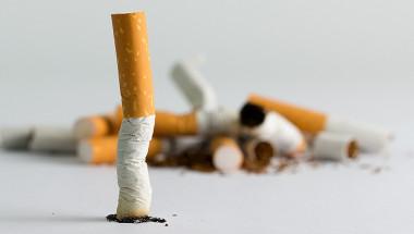 6 лечебни билки за отказ  от тютюнопушенето