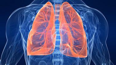 Възможно е пушач да изчисти белия си дроб