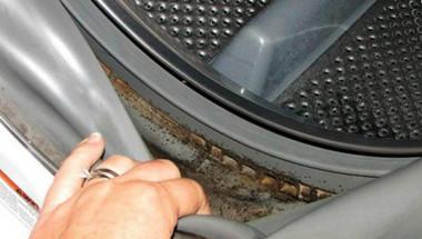 Как да премахнете плесента от пералната машина, за да се избавите  от респираторни и кожни инфекции