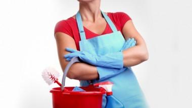 Норвежки учени посочиха опасна болест, която дебне чистниците