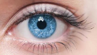 Най-мощният лек за зрение в света: Научете го, преди да бъде премахната от интернет