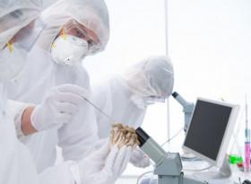Най-мощната природна терапия за възстановяване имунитета на онкоболни