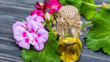Рецепти от народната медицина за лечение на псориазис
