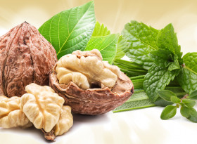 Орехи и билки помагат при диабет