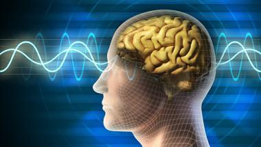 Как да се спасим от неизлечими мозъчни заболявания като болестта на Алцхаймер