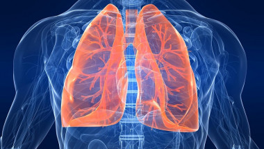 Забравете за тютюнджийската кашлицата! Лесна рецепта да почистите белите си дробове след пушене само за три дни
