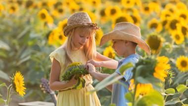 Слънчогледовите семки могат да предизвикат апендицит?