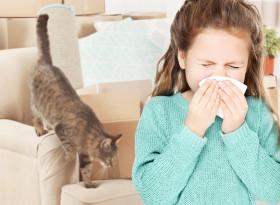 Д-р Елена Георгиева, д.м.: Астмата се развива на основата на алергия