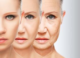 Японски учени откриха каква е причината някои хора да живеят до дълбока старост, а други не