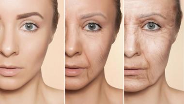Учени от UK установиха кое е най-доброто средство против стареене