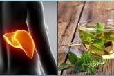 Една чаша на ден и черният ви дроб ще се регенерира