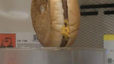 Какво се случва в стомаха ни, когато изядем чийзбургер от МcDonalds (ВИДЕО)