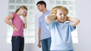 Д-р Цветеслава Гълъбова: В 92% от случаите майките отчуждават детето от бащата