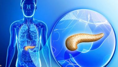 За лечението на панкреаса има 3 природни продукта, за които лекарите не говорят