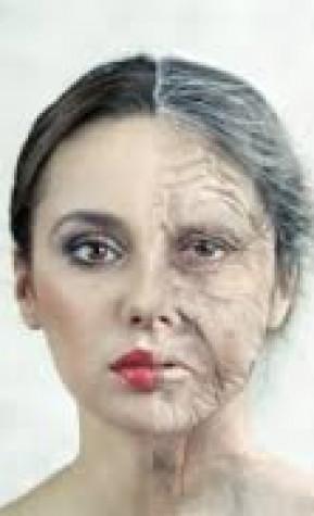 US-учени откриха още един продукт, забавящ стареенето