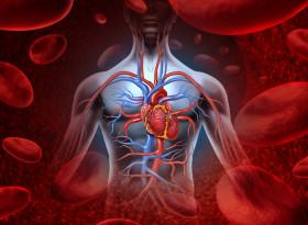 Необичайни признаци на запушени артерии и сърдечни заболявания