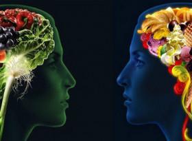 Специалисти от Харвард препоръчват пет храни за мозъка