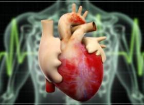 Четири продукта, които унищожават сърцето ви