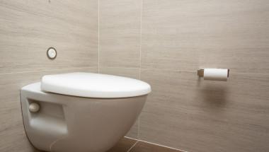 Може ли да сядаме на тоалетната чиния в обществените тоалетни?