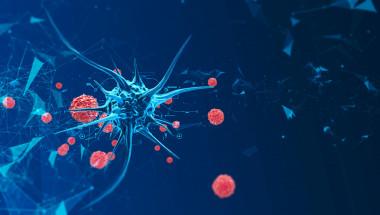 Топ 5 на най-мистериозните вируси, заплашващи да изличат човечеството от лицето на земята