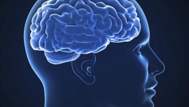 Ето как да изострите мозъка си с 60%, трябва само да...