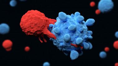 CAR-T терапията - препрограмиране на имунни клетки при рак на кръвта