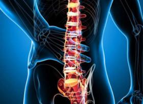 Опасно заболяване ли е хемангиомът  на гръбначния стълб?