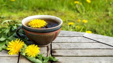 Кои билки се берат през май?