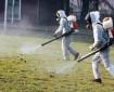 Мутирали комари носят страшна зараза