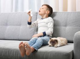Д-р Искра Капинчева: Научно проучване показва, че 98,4% от алергичните деца са страдали от майчино отхвърляне