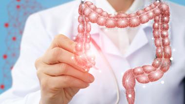 Д-р Радосвета Запрянова: Чистото дебело черво е в основата на здравето