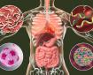 Янко Буюклиев: Високото кръвно се дължи на паразити и бактерии в тялото