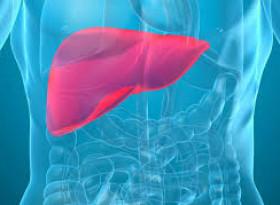 Първи симптоми за увреждане на черния дроб